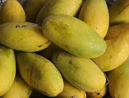 mango dh